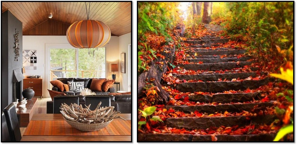 Autumn interior inspiration dark wood 2