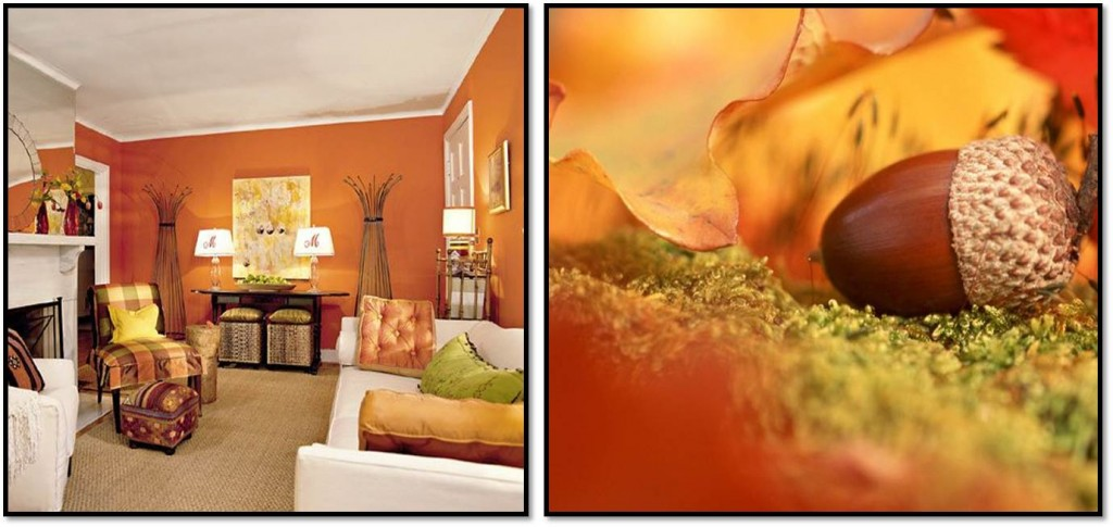 Autumn interior inspiration orange 2